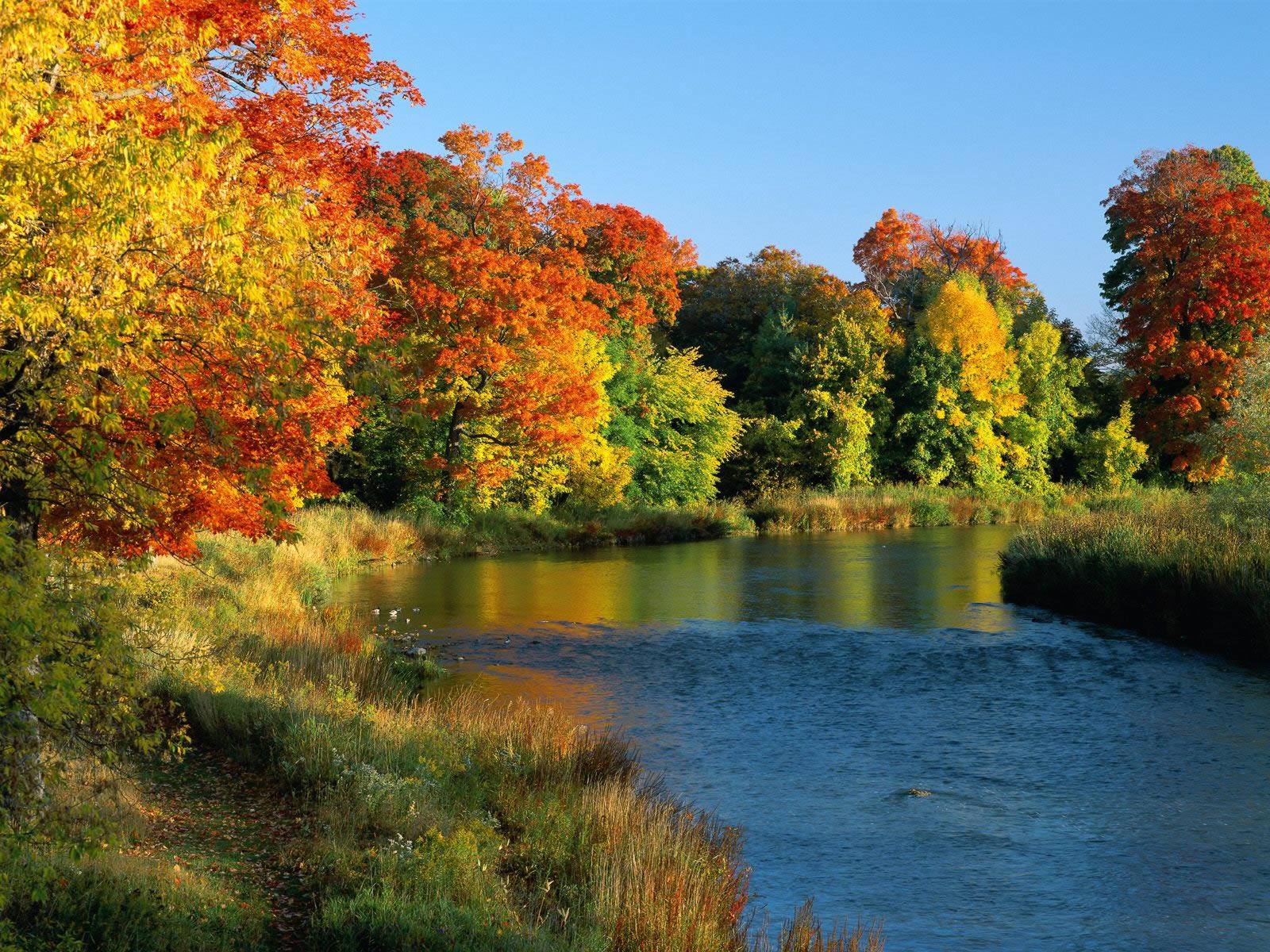 autumn nature river -#main