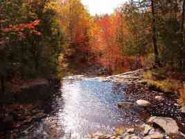 babbling stream in autumn