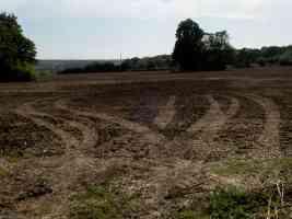 tyre tracks in a muddy field