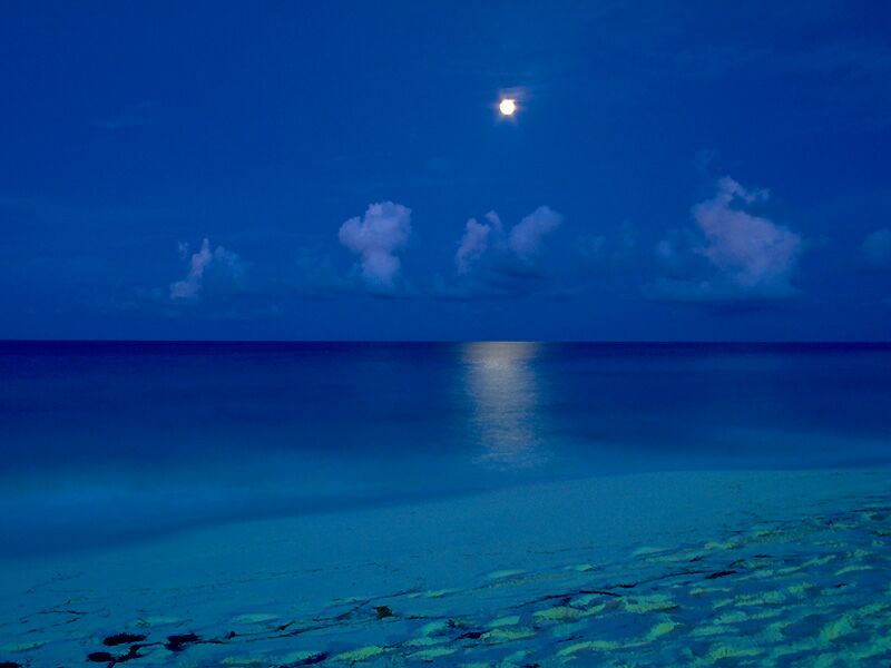 By The Light Of The Moon Cancun Mexico