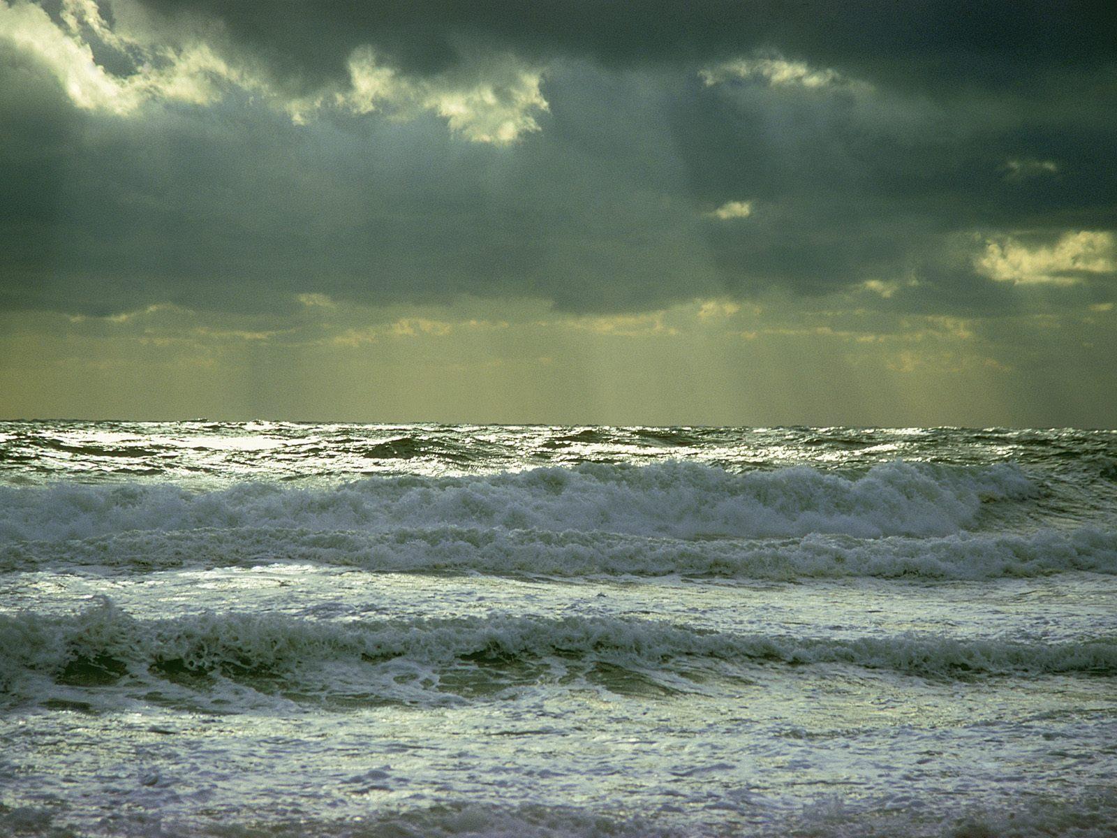 Island Beach New Jersey