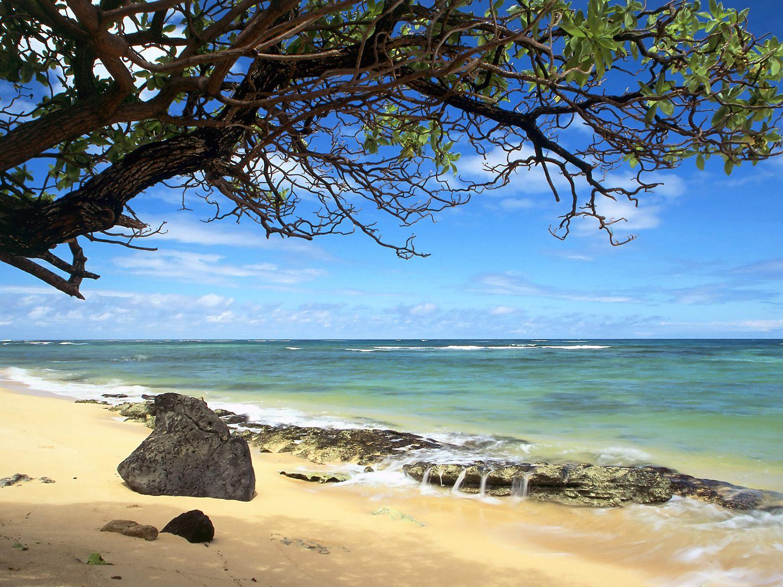 Kanenelu Beach Oahu Hawaii