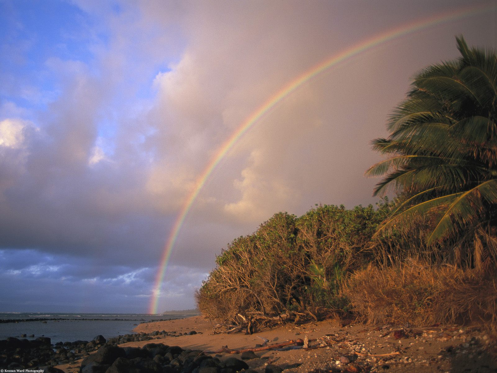 Tropical Rainbow Molokai Hawaii