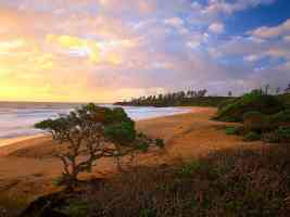 Donkey Beach Kauai Hawaii