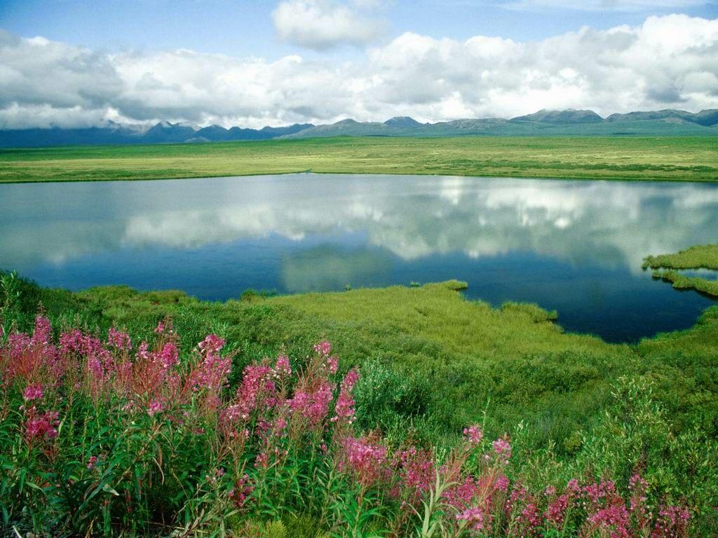 Alaska Range Alaska