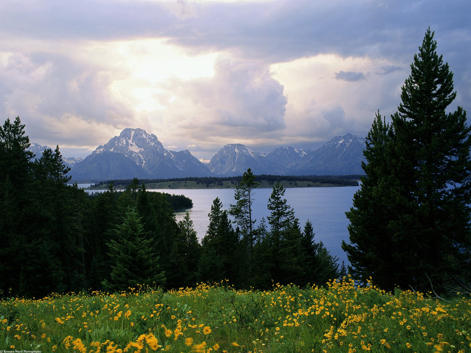 Jackson Lake And Grand Teton Wyoming