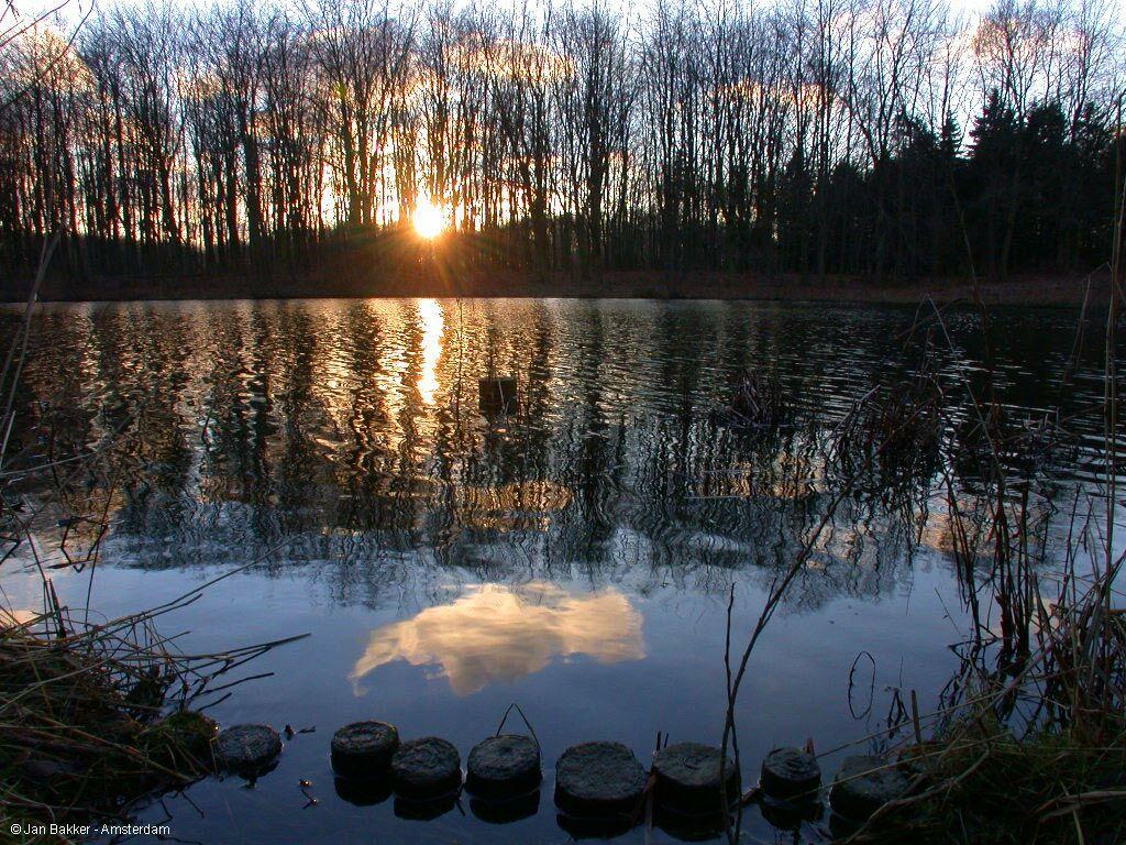 Sunset Through Dapple Light On Lake