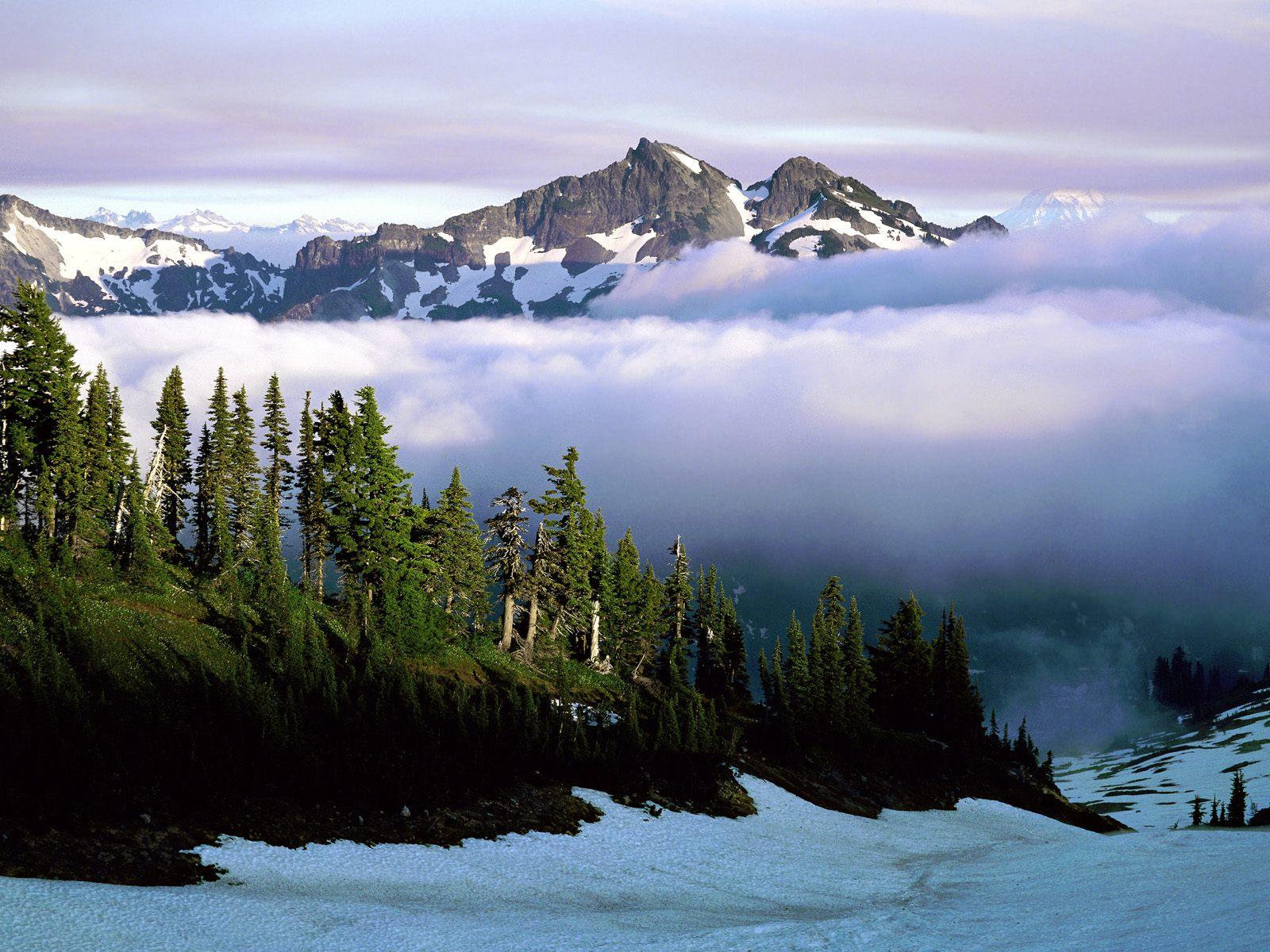 Cloud Cover Mount Rainer National Park Washington