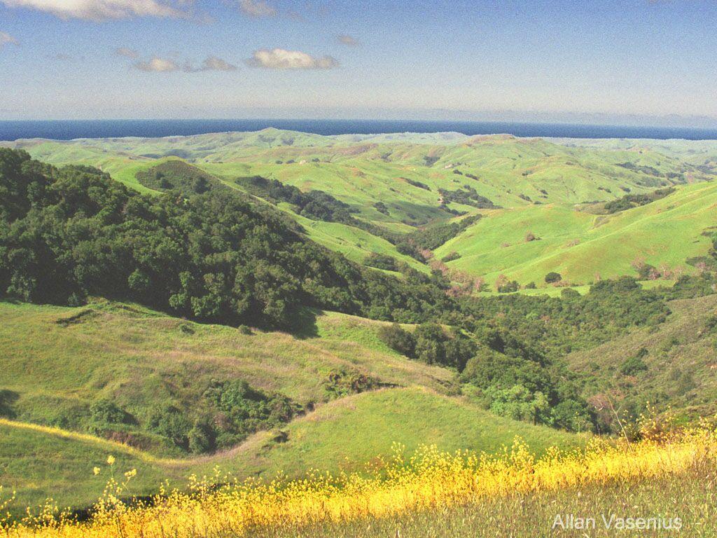 Coastal Valley Meets Pacific