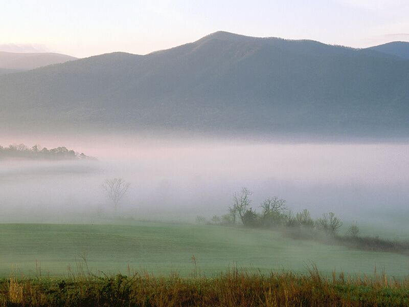 Foggy Sunrise Cades Cove Great Smoky Mountains Tennessee