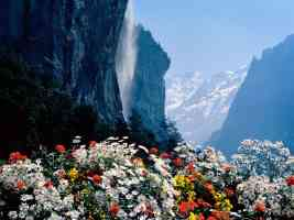 Staubbach Waterfall Lauterbrunnen Switzerland