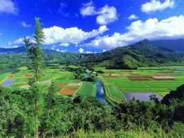 Hanalei Valley Kauai Hawaii