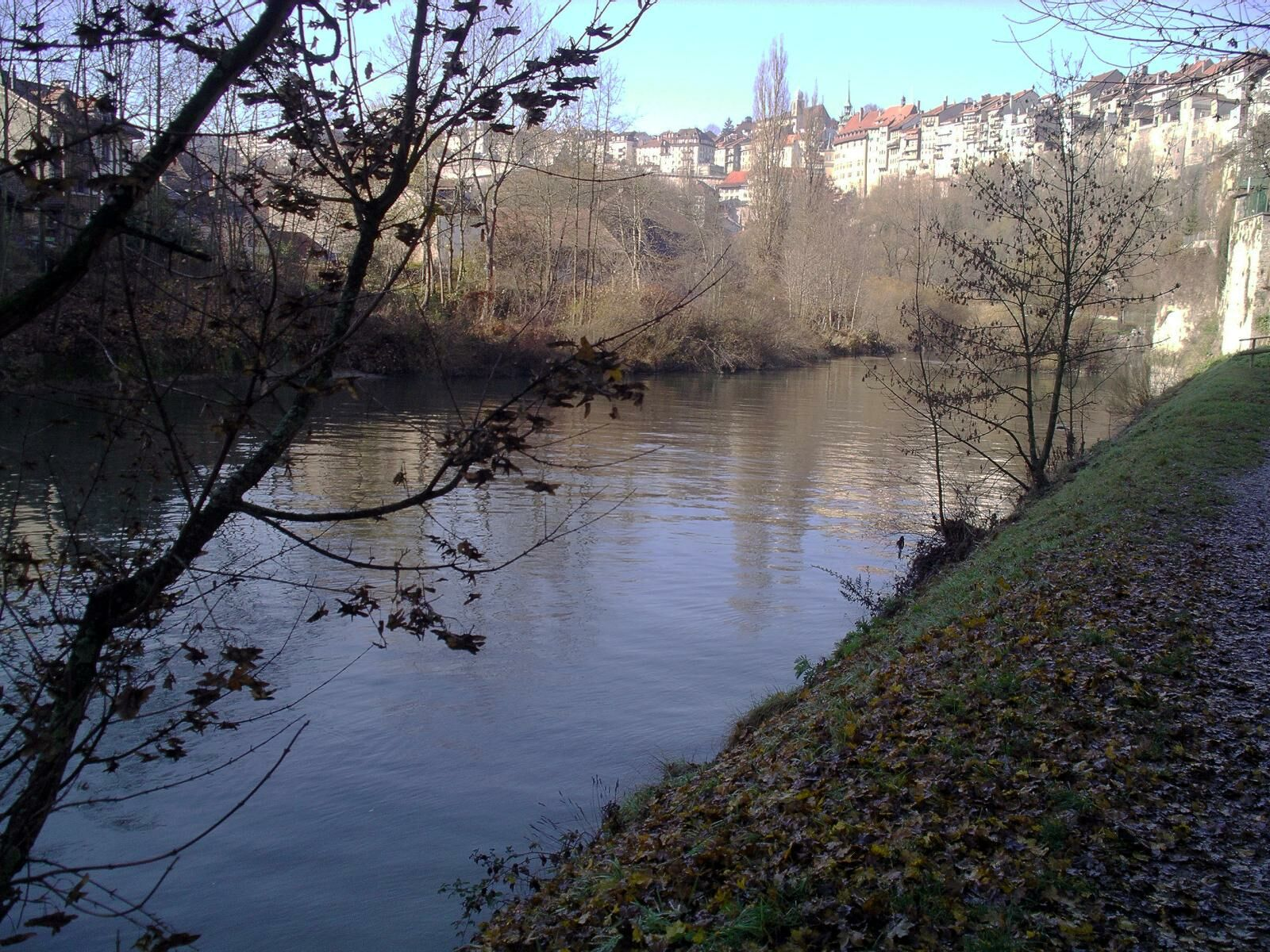 Basse Ville Fribourg At Riverbank