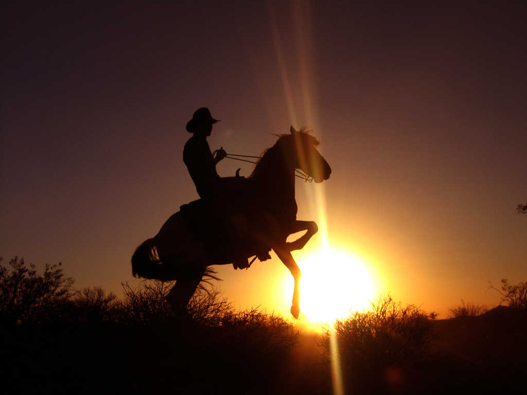 cowgirl silhouett wallpaper - photo #16