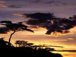 A New Beginning Tanzania Africa