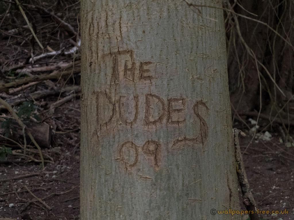 The Dudes 09