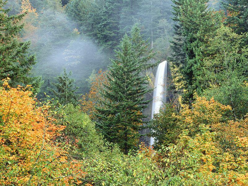 Latourell Falls Columbia River Oregon
