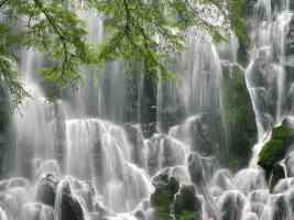 Ramona Falls Mount Hood Wilderness Oregon