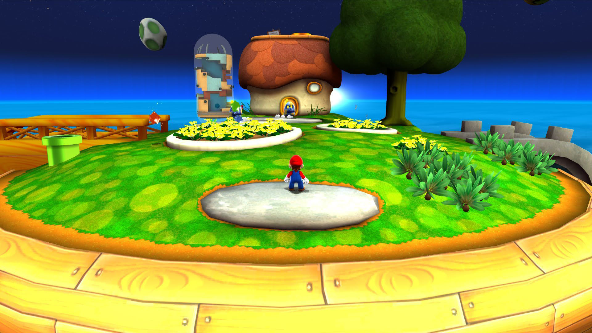 Mario In His Garden