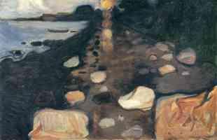 sunlight on the shoreline