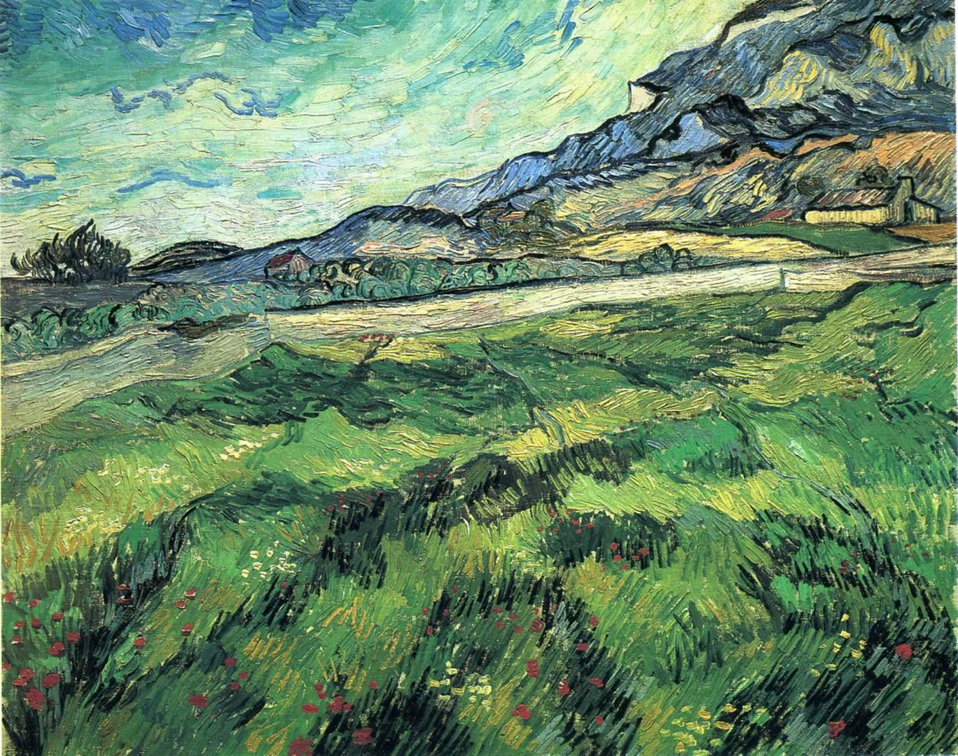 Green Wheatfield
