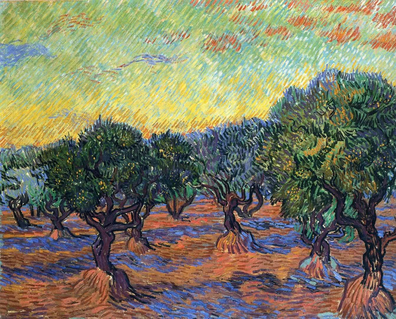 Olive Grove Orange Sky