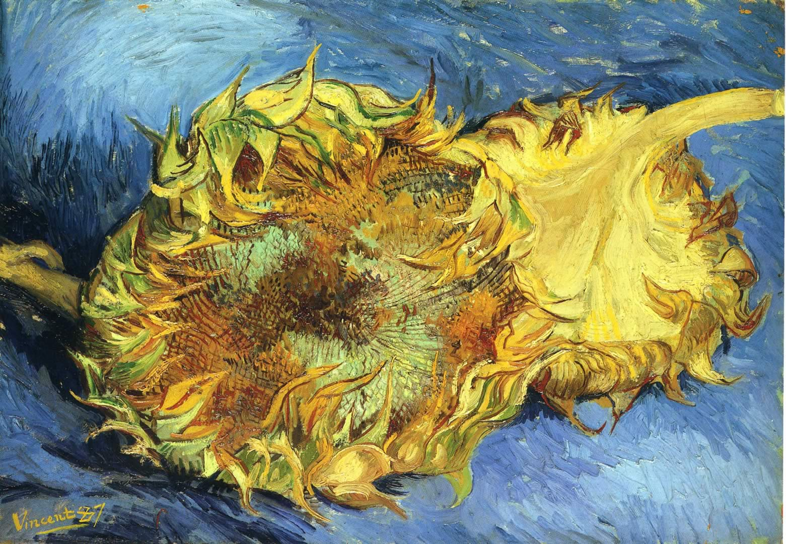 still life with two yellow sunflowers vincent van gogh wallpaper image. Black Bedroom Furniture Sets. Home Design Ideas