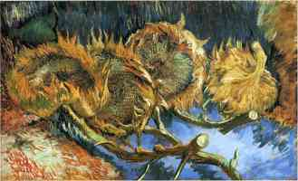 still life with four old sunflowers