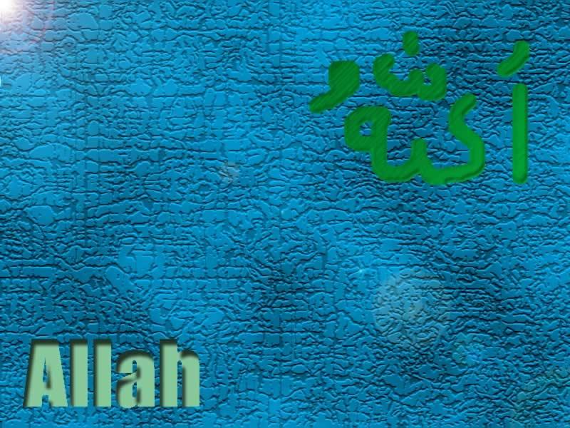 Allah By Exortia