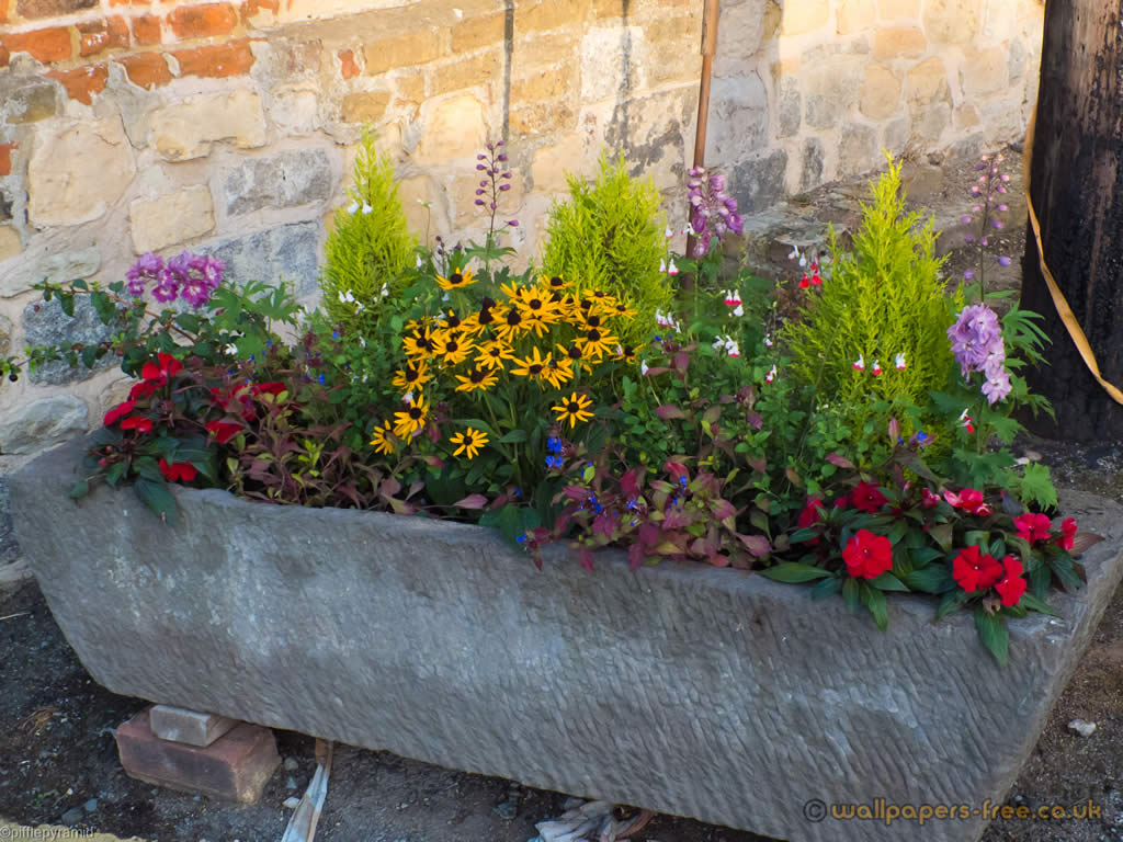 Stone Trough Full Of Flowers And Plants