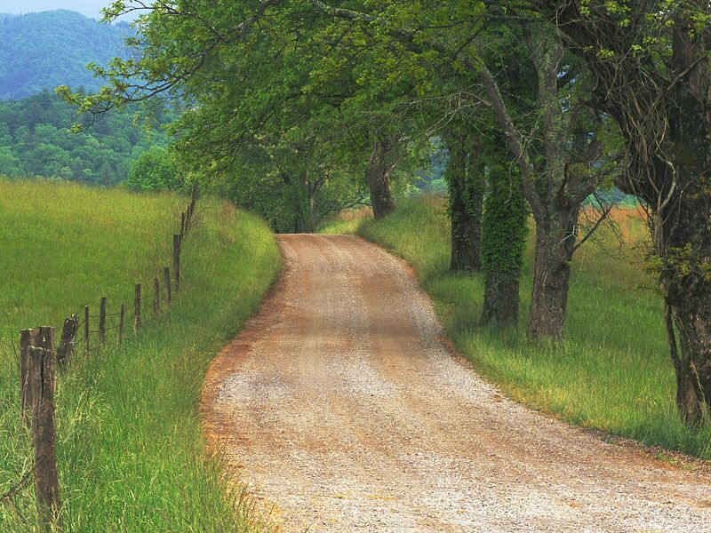 Roads And Paths Country Road Through Cades Cove Great Smoky Mountains Tennessee