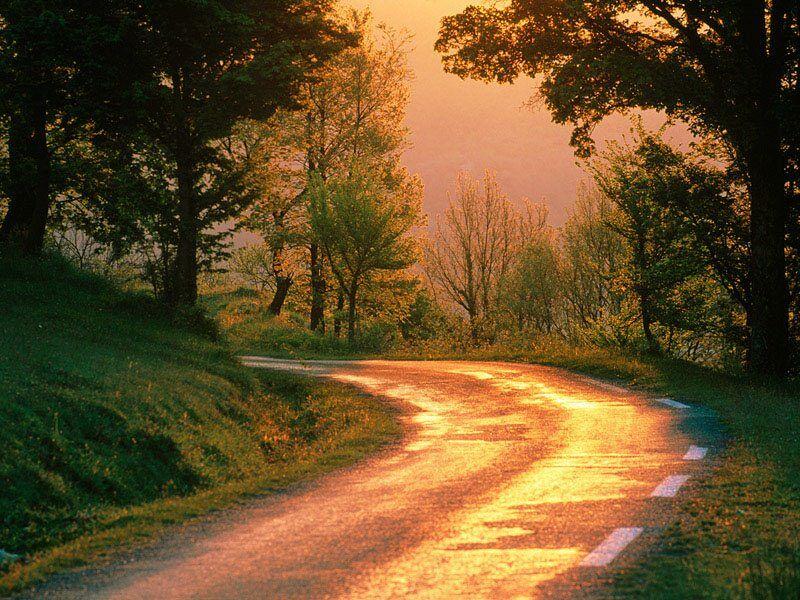 Golden Road France