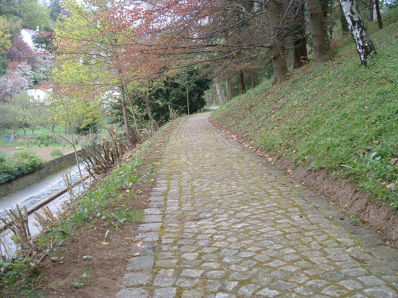 Cobbled Country Path