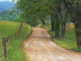 Country Road through Cades Cove Great Smoky Mountains Tennessee