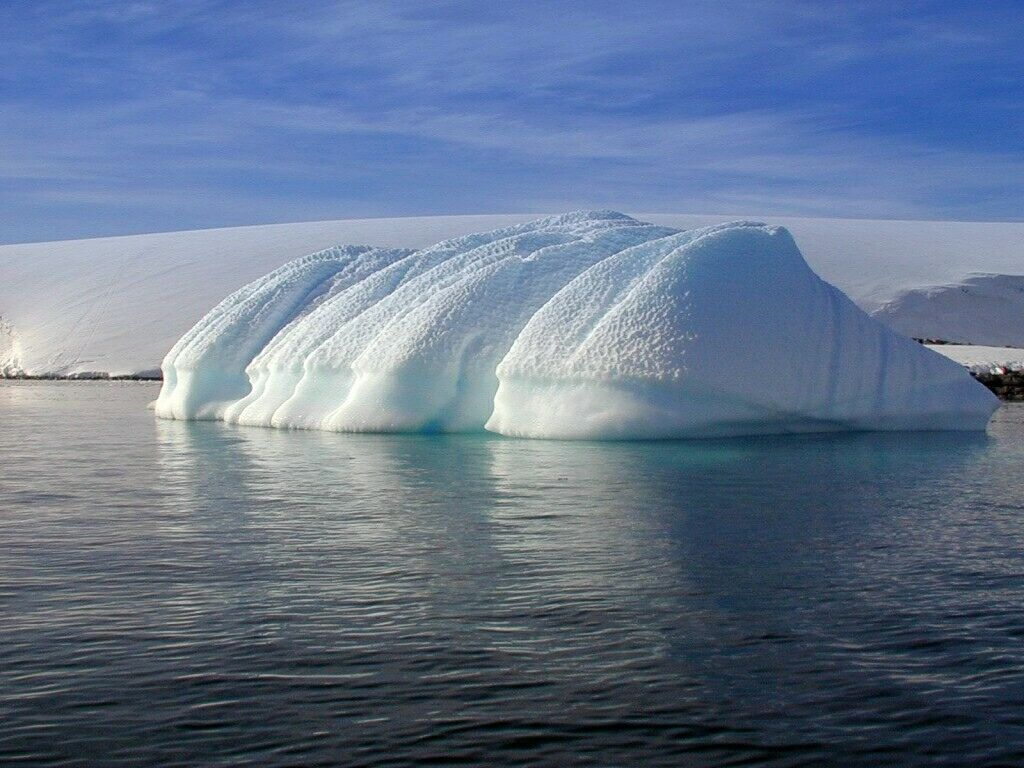 Antarctica II Cruise 45