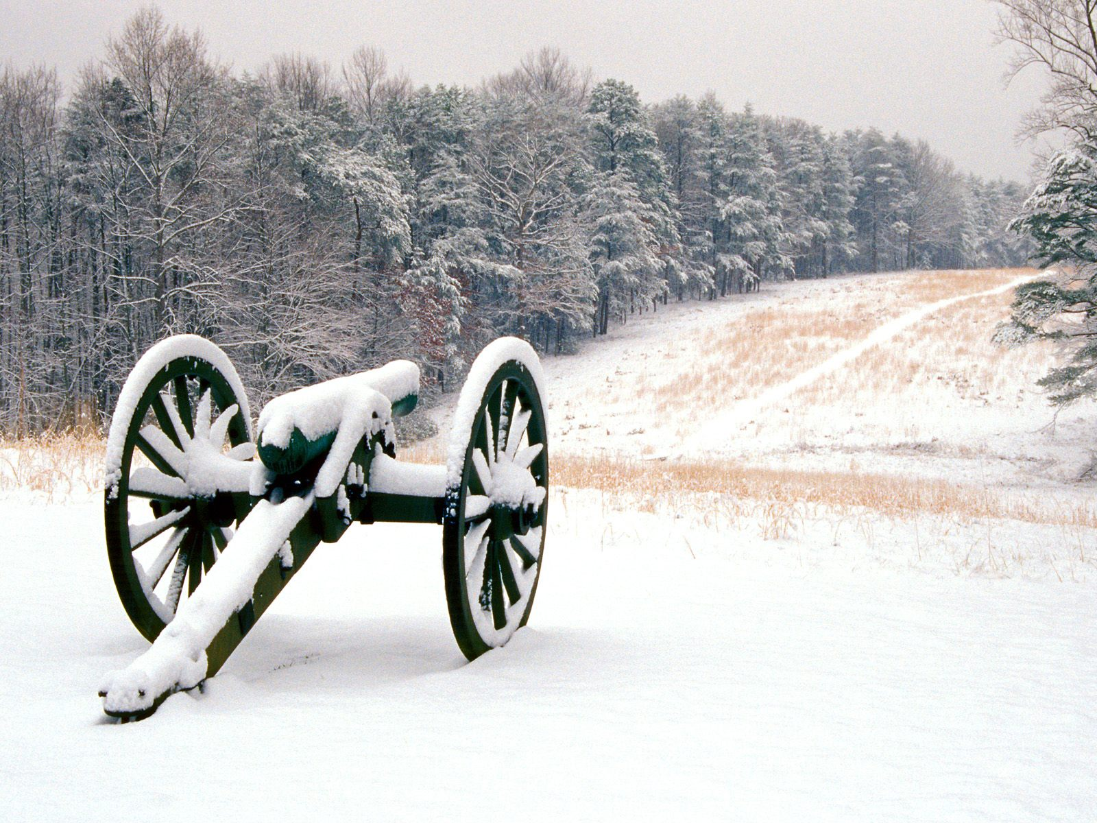Confederate Artillery Hazel Grove Chancellorsville National Military Park Virginia