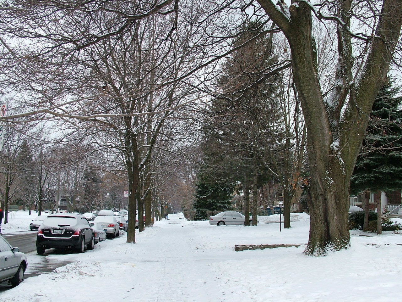 Toronto Winter Neighborhood