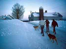 New England EveningChores Northeast Kingdom Vermont