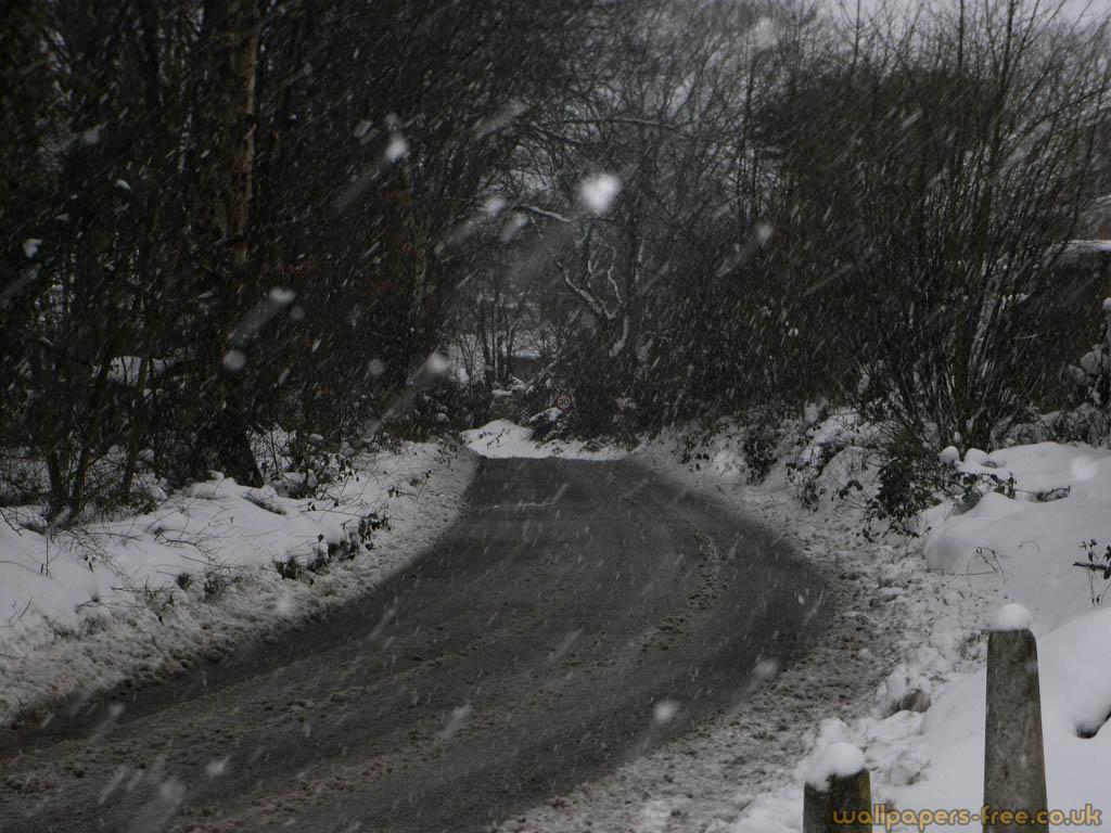 Snowy Road In A Blizzard