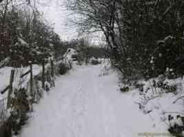 snowy path near boughton monchelsea