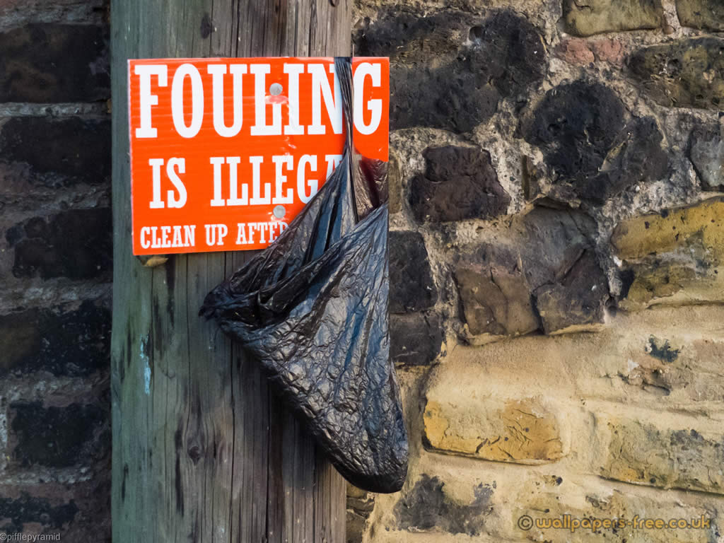 Fouling Is Illegal