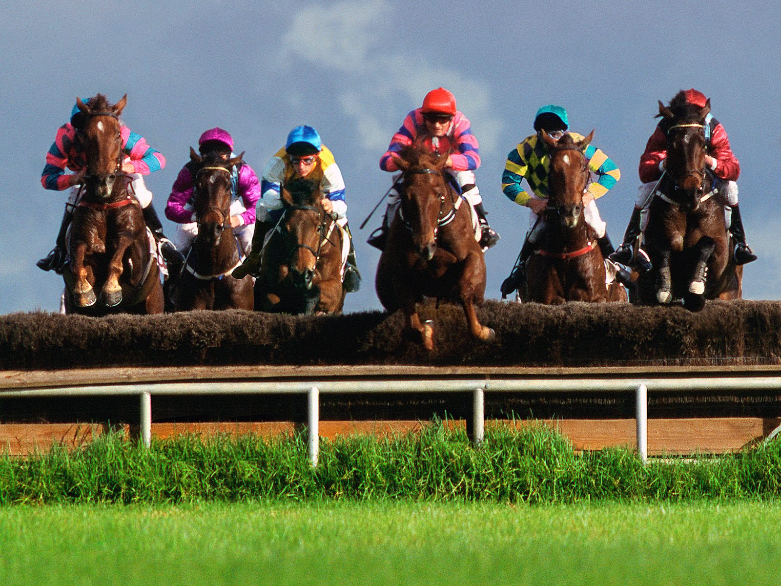 Pin horse racing gallery on pinterest for Steeple chase
