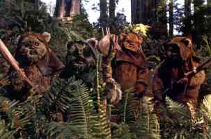 a group of ewoks