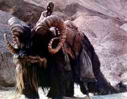 a tusken raider riding a bantha