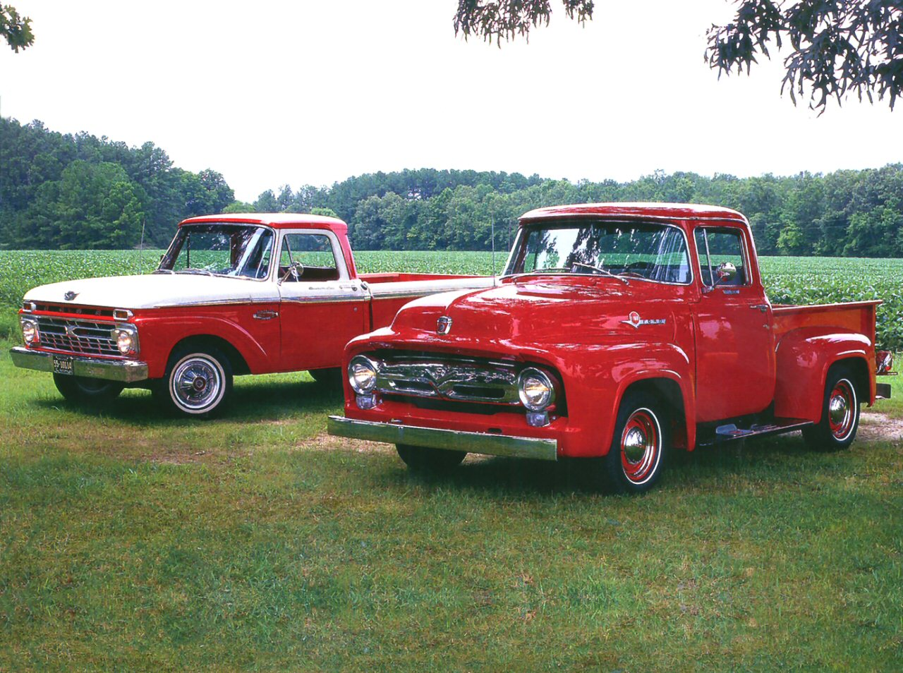 1956 Ford F 100 Pickup 1966 Ford F 100 Pickup Red Fvl