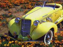 1935 Auburn 851 Boattail Speedster Yellow Top fv