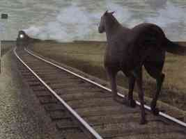 Horse vs Train