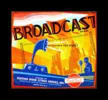 broadcast brand oranges
