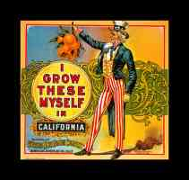 uncle sam california