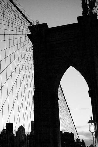 Bridge The Bridge The City